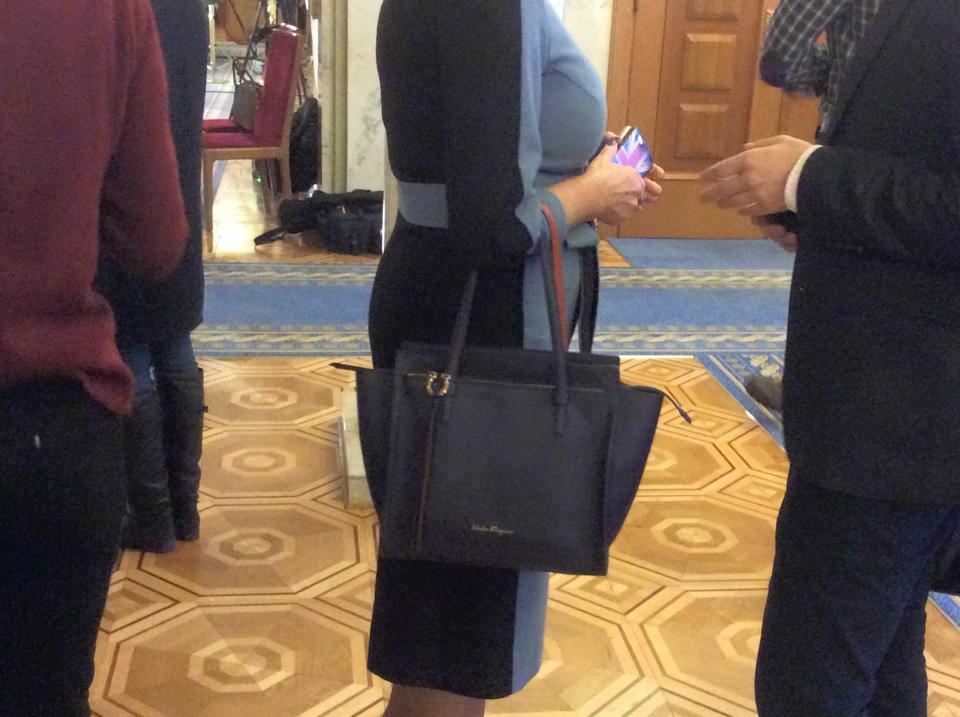 Нардеп Нина Южанина пришла в Раду с сумкой за $1350