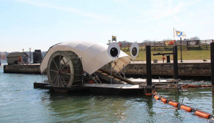 Три инженера избавили родную гавань от 350 000 кг мусора