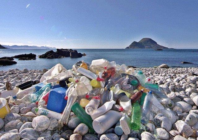 В Китае создали пластик, который разлагается в воде