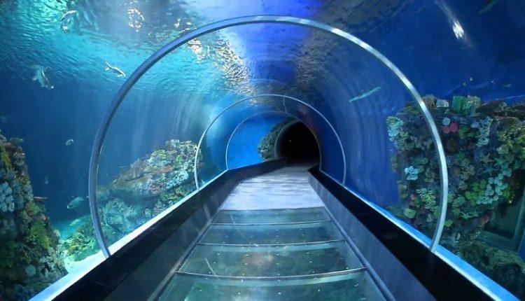 В Китае открыли самый глубокий в стране тоннель метро, проходящий под водой