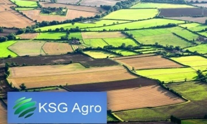 Стало известно, кому KSG Agro продал предприятие на Днепропетровщине