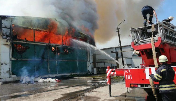 Во время пожара на птицеферме под Киевом заживо сгорели 200 тысяч кур