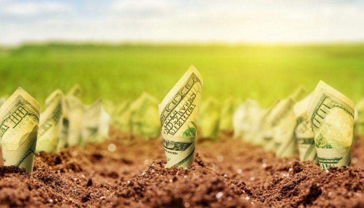 У Зеленского считают, что ввести в Украине рынок земли можно через год