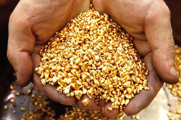 В Эквадоре обнаружили одно из крупнейших в мире месторождений золота